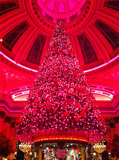 Christmas tree at The Dome, Edinburgh