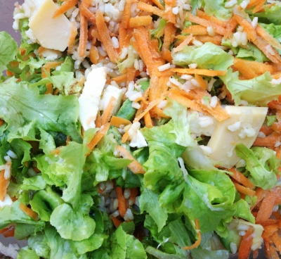 lettuce + carrots + fennel + brown rice + mozzarella cheese
